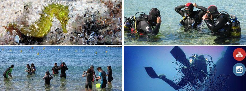Diving in Cala S'Alguer
