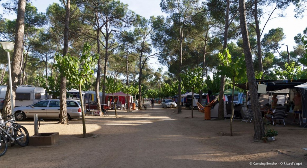 Camping Benelux Nearby Palamós on the Costa Brava